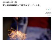 LEON/WEB MEDIA